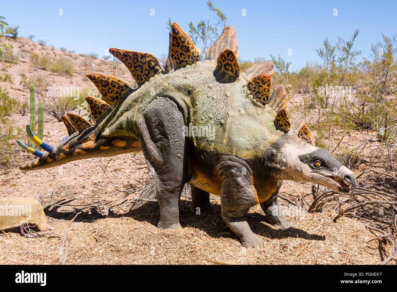 Stegosaurus - Dinosaurs in the Desert at the Phoenix Zoo Stock Photo