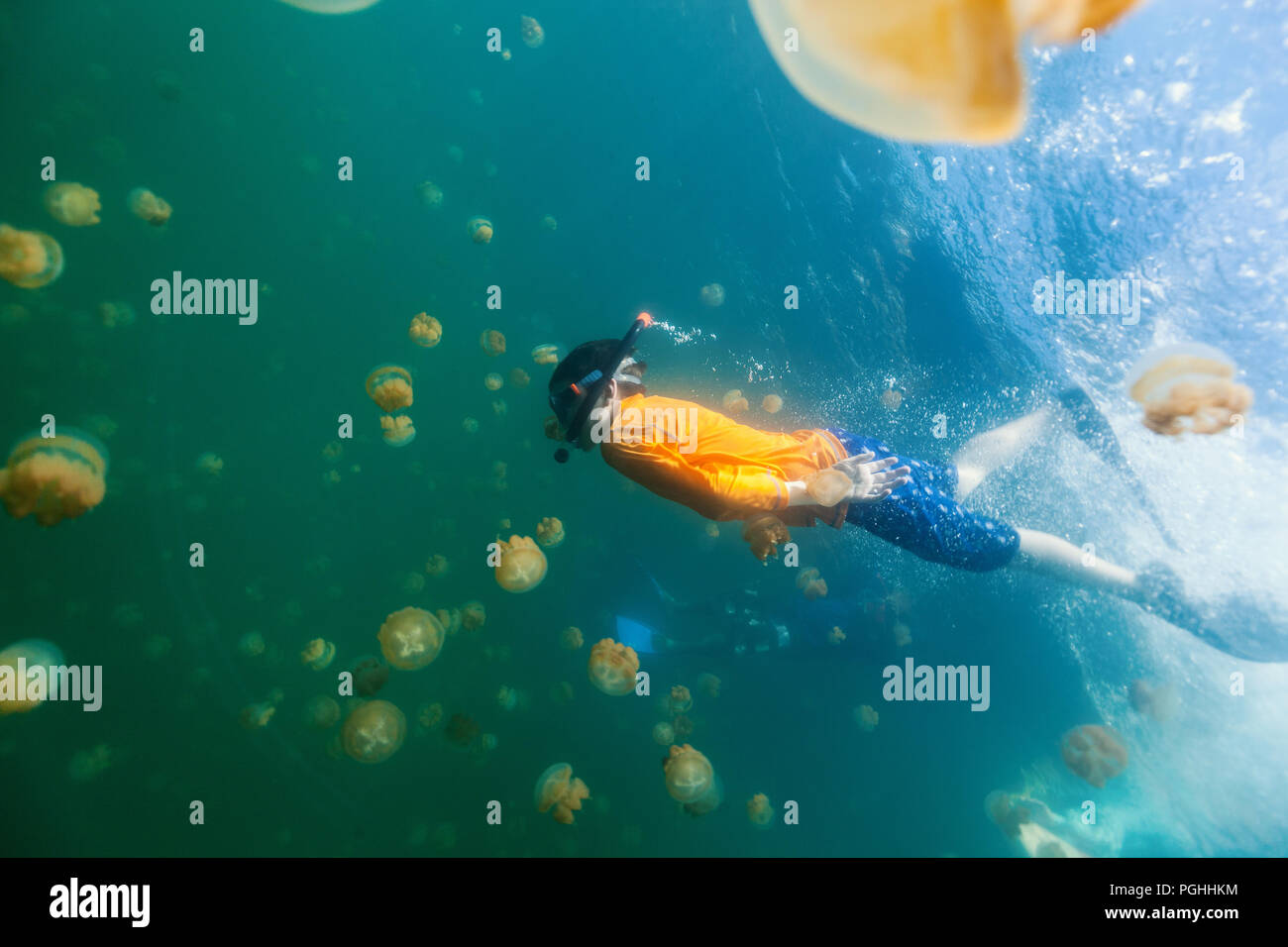 Underwater photo of child diving with endemic stingless jellyfish in lake at Palau. Stock Photo