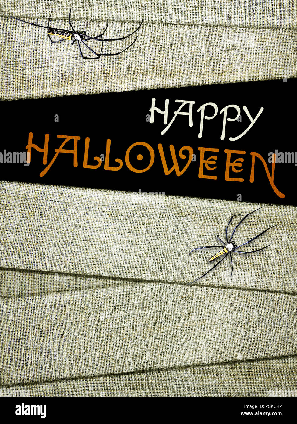 Halloween background with old bandage of mummies, spiders