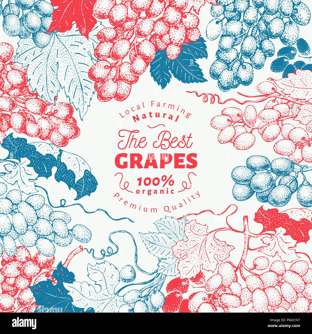 Grape Berry Frame Template Hand Drawn Vector Fruit Illustration