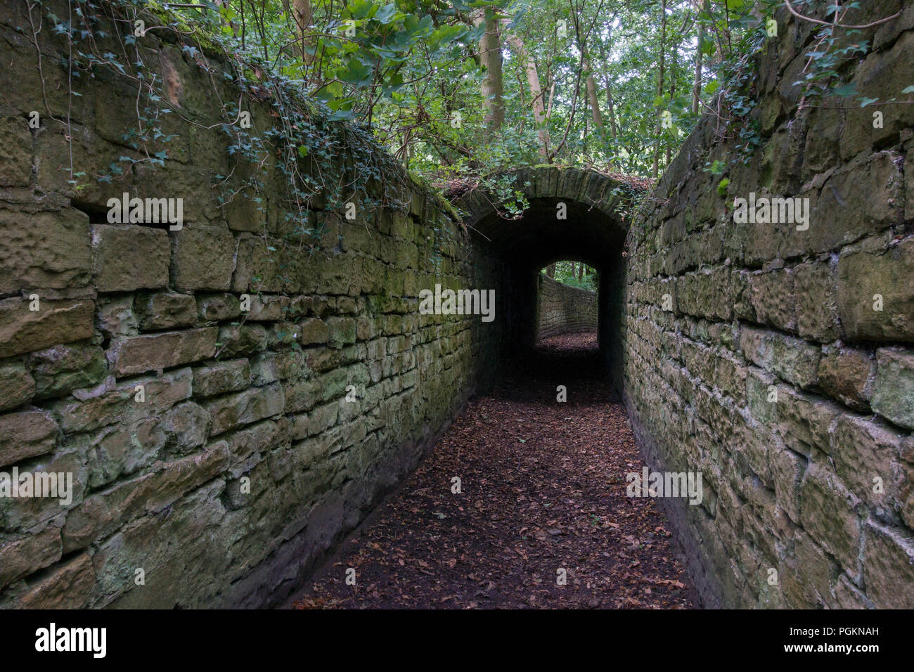 The tunnel on the walk to Harewood Castle, a fourteenth century hall house and courtyard located on the Harewood Estate, rescued by the latter and Eng - Stock Image