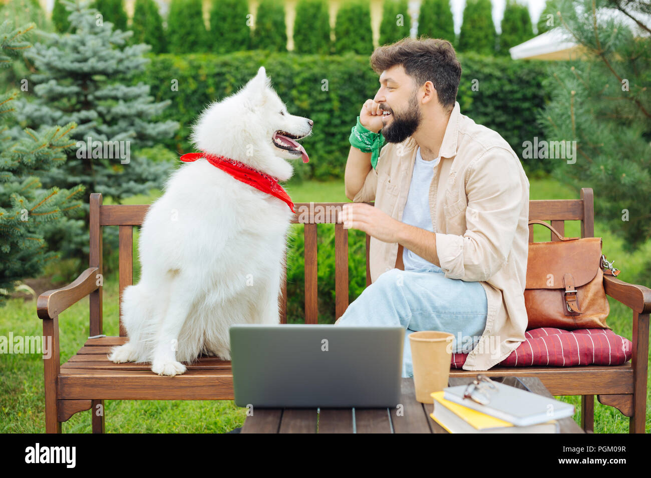 Bearded man wearing green hand band playing with his pet - Stock Image