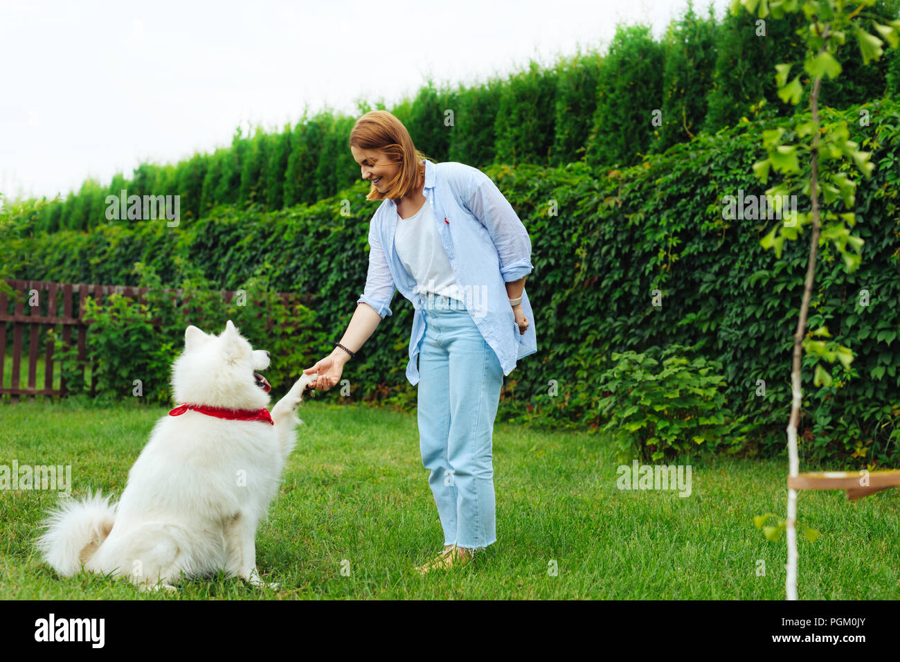 Stylish blonde-haired woman playing with dog in the garden - Stock Image