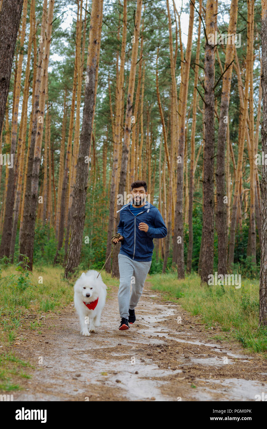 Handsome man smiling while running with his white husky - Stock Image