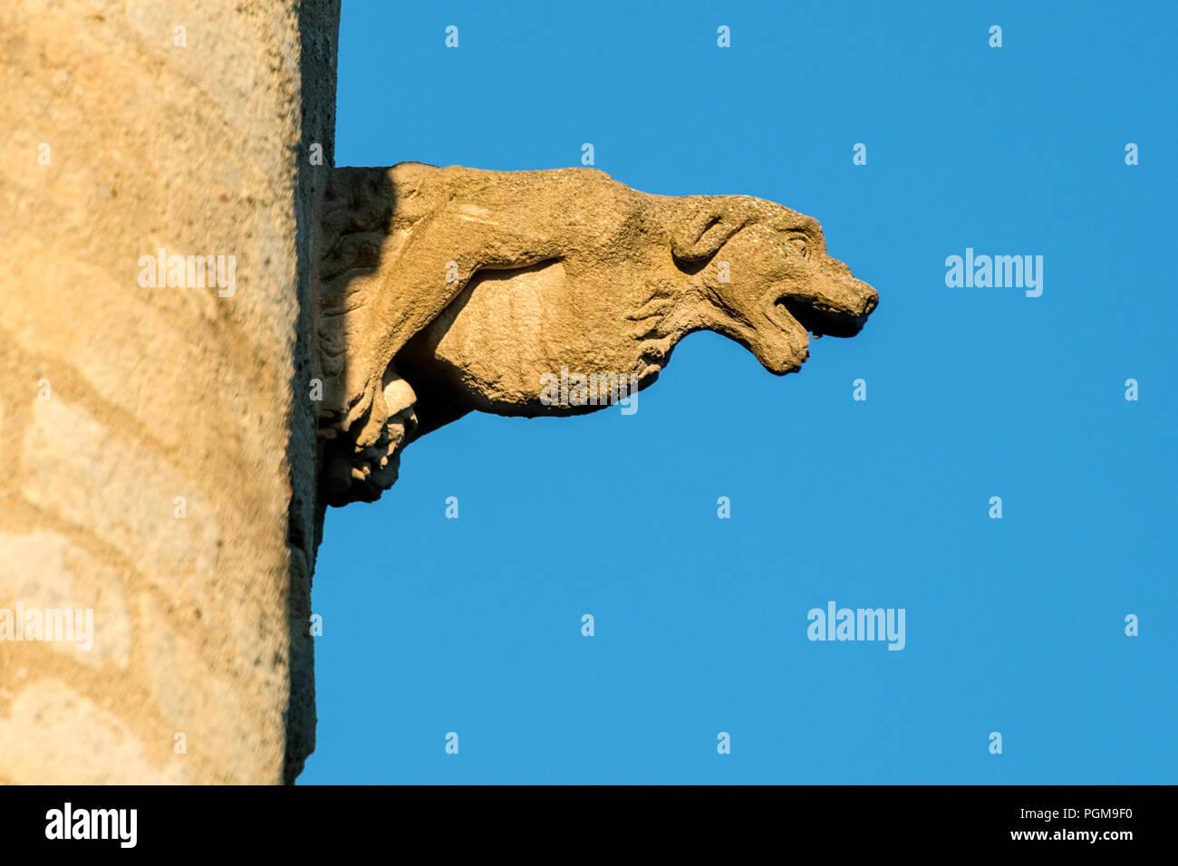 cougar carcassonne cornwall