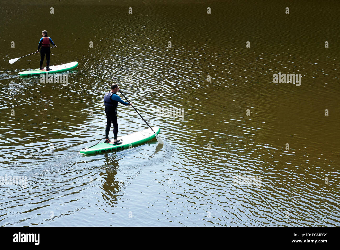 Paddle Boarders on the River Teifi at Cardigan - Stock Image
