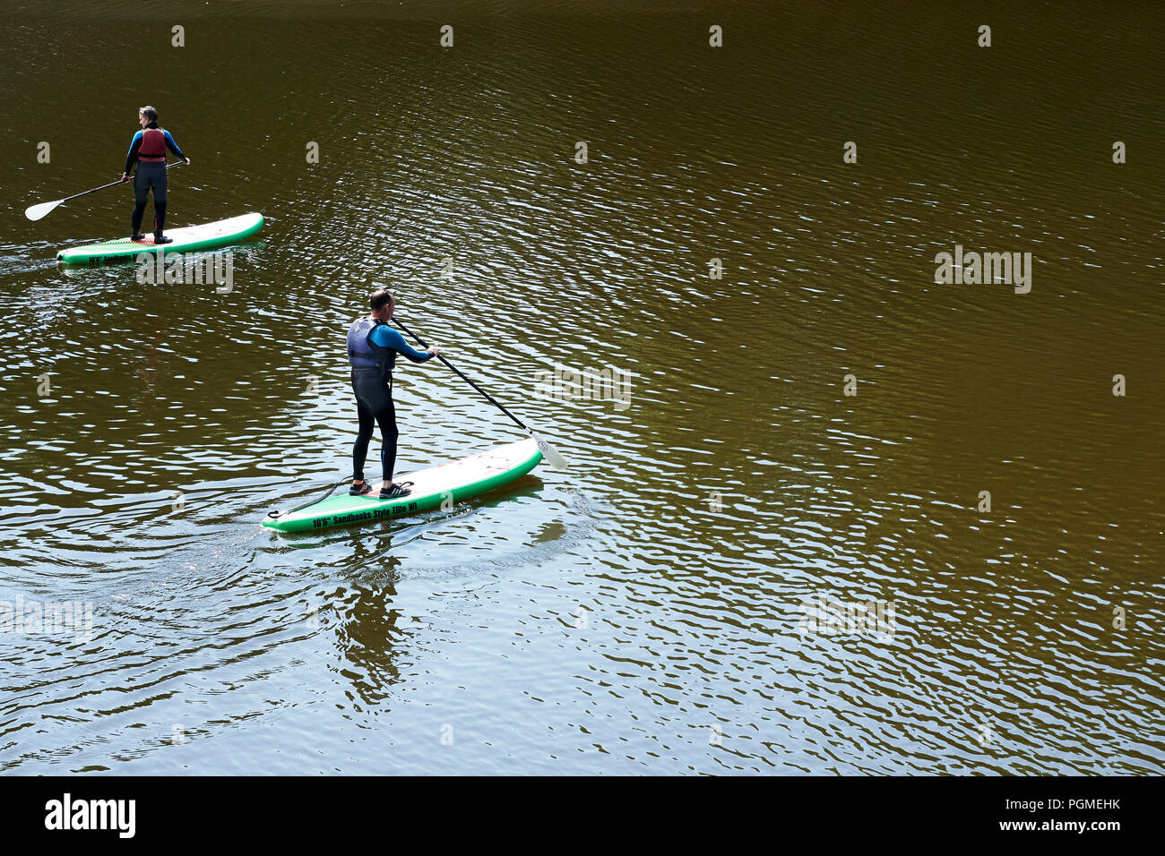Paddle Boarders on the River Teifi at Cardigan Stock Photo