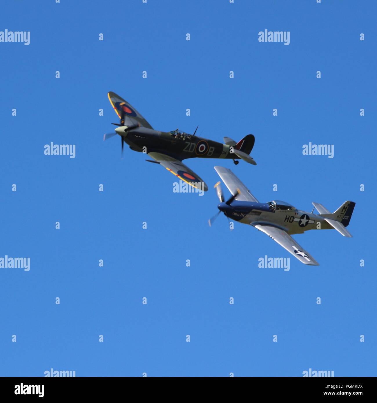 Spitfire & Mustang Air Display at the 2016 Goodwood Revival - Stock Image
