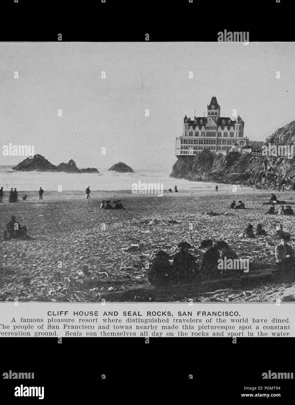 Black and white photograph showing people and seals sitting and standing on a beach in the foreground with the ocean, cliffs, and Adolph Sutro's late-19th-century Cliff House Restaurant, a multilevel Victorian Chateau, in the background, captioned 'Cliff House and Seal Rocks, San Francisco', 1906. Courtesy Internet Archive. () Stock Photo