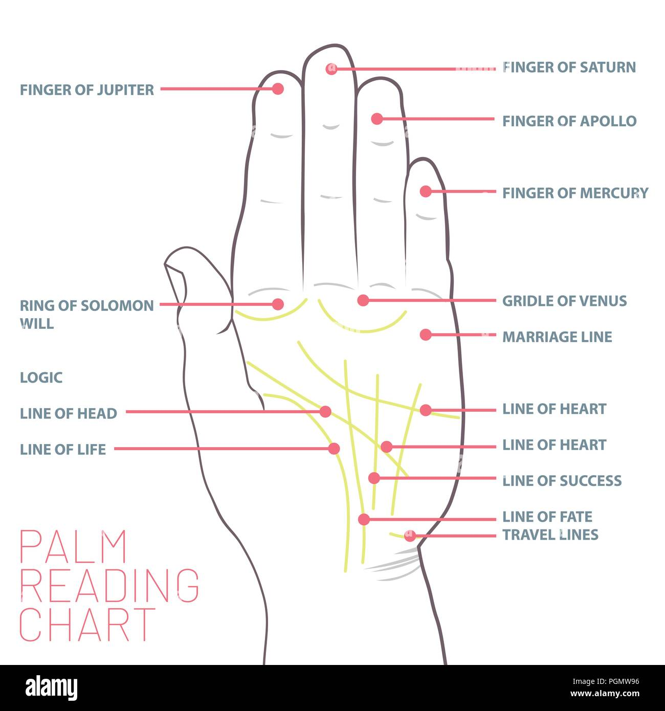palm reading lines stock photos palm reading lines stock images
