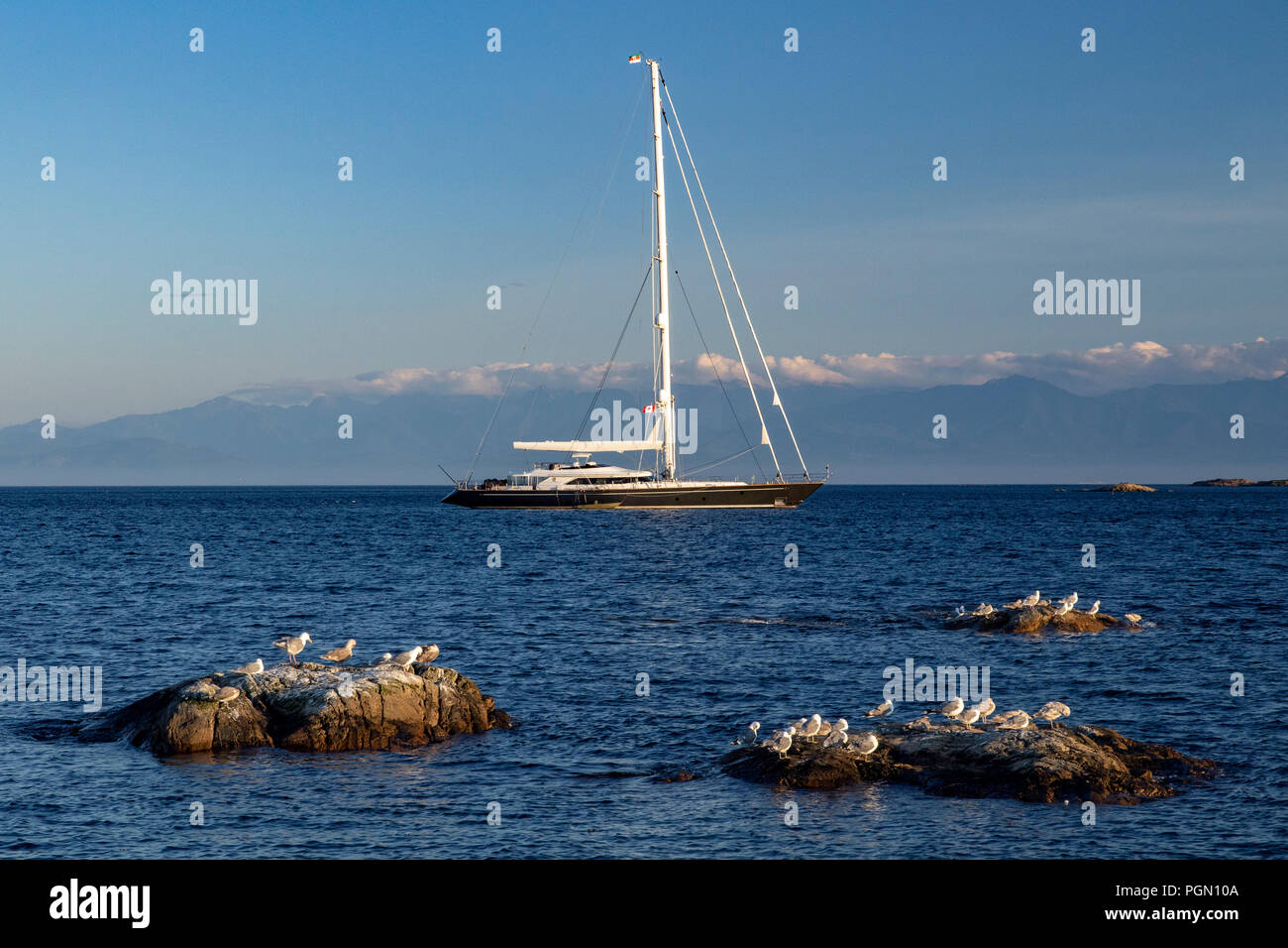 Luxury Sailboat anchored off Cattle Point in Uplands Park, Oak Bay near Victoria, Vancouver Island, British Columbia, Canada Stock Photo