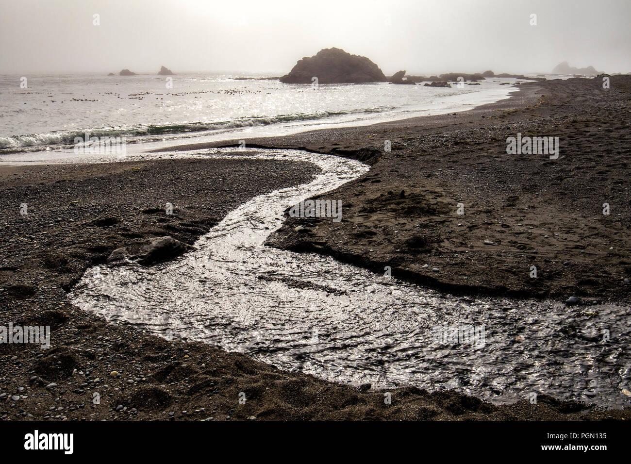 Freshwater stream on Sombrio Beach, Juan de Fuca Provincial Park - near Port Renfrew, Vancouver Island, British Columbia, Canada Stock Photo