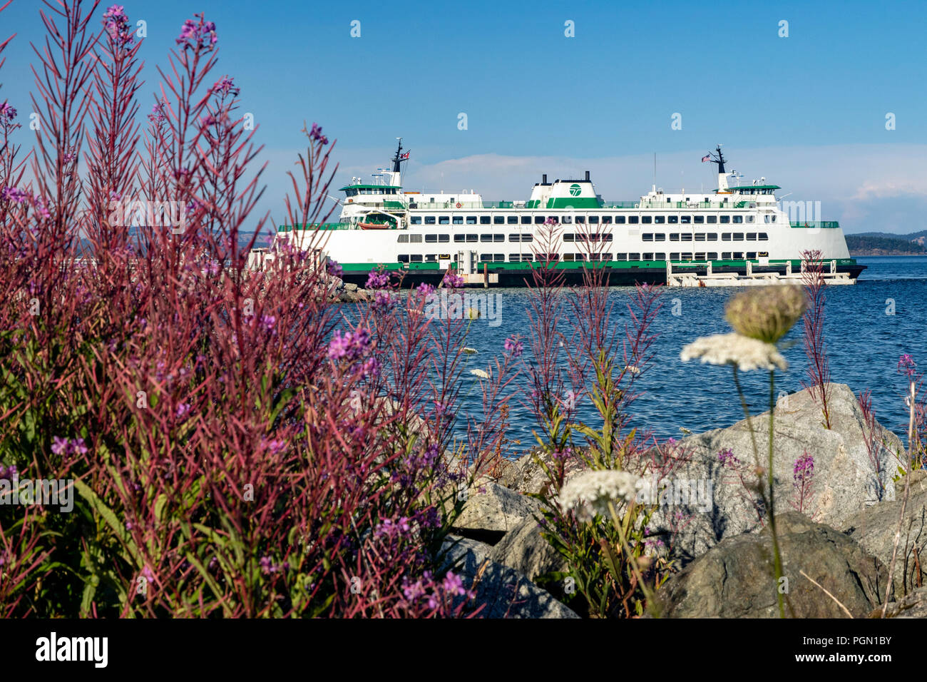 Washington State Ferry (Chelan) at Sidney Ferry Terminal, Vancouver Island, British Columbia, Canada - Stock Image