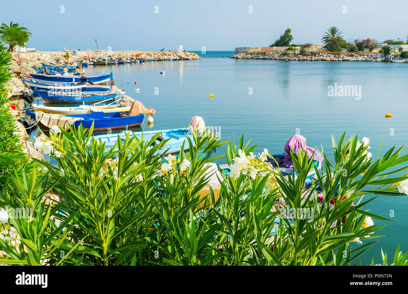 The picturesque ancient port of Carthage with greenery along the shore and numerous fishing boats, Tunisia. - Stock Image