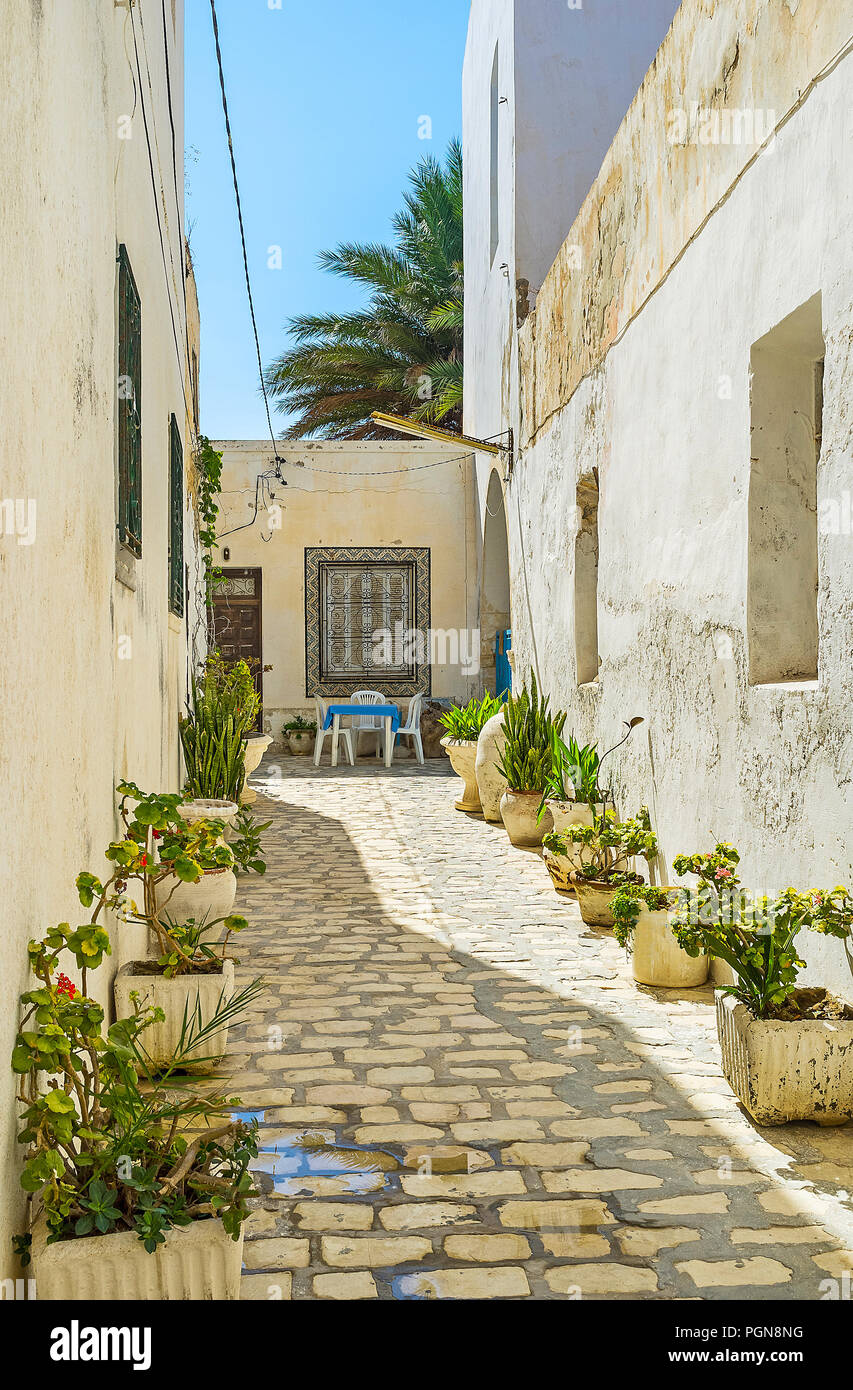 The narrow backstreet with white house walls is decorated with numerous plants in pots, Mahdia, Tunisia. - Stock Image