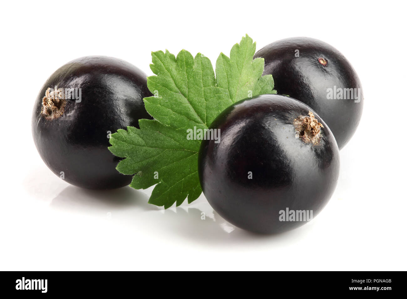 three black currant with leaf isolated on white background Stock Photo