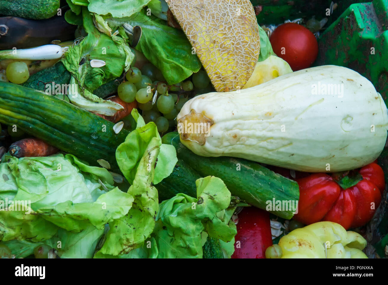 Mixed vegetables for cooking and animal feeding. Stock Photo