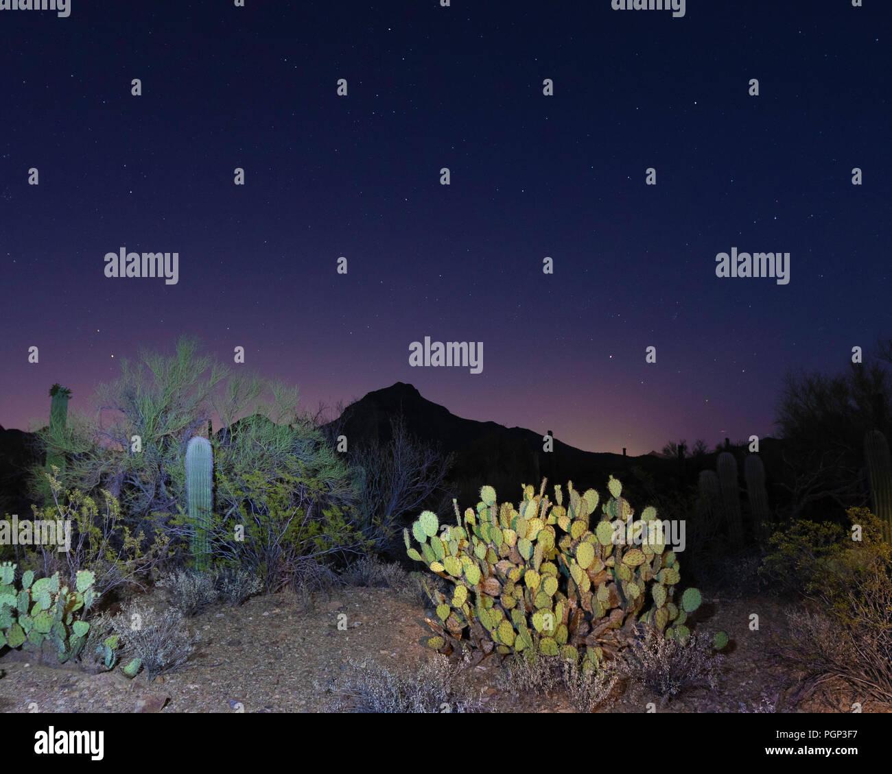 Night sky, starry night, Tucson, Arizona - Stock Image