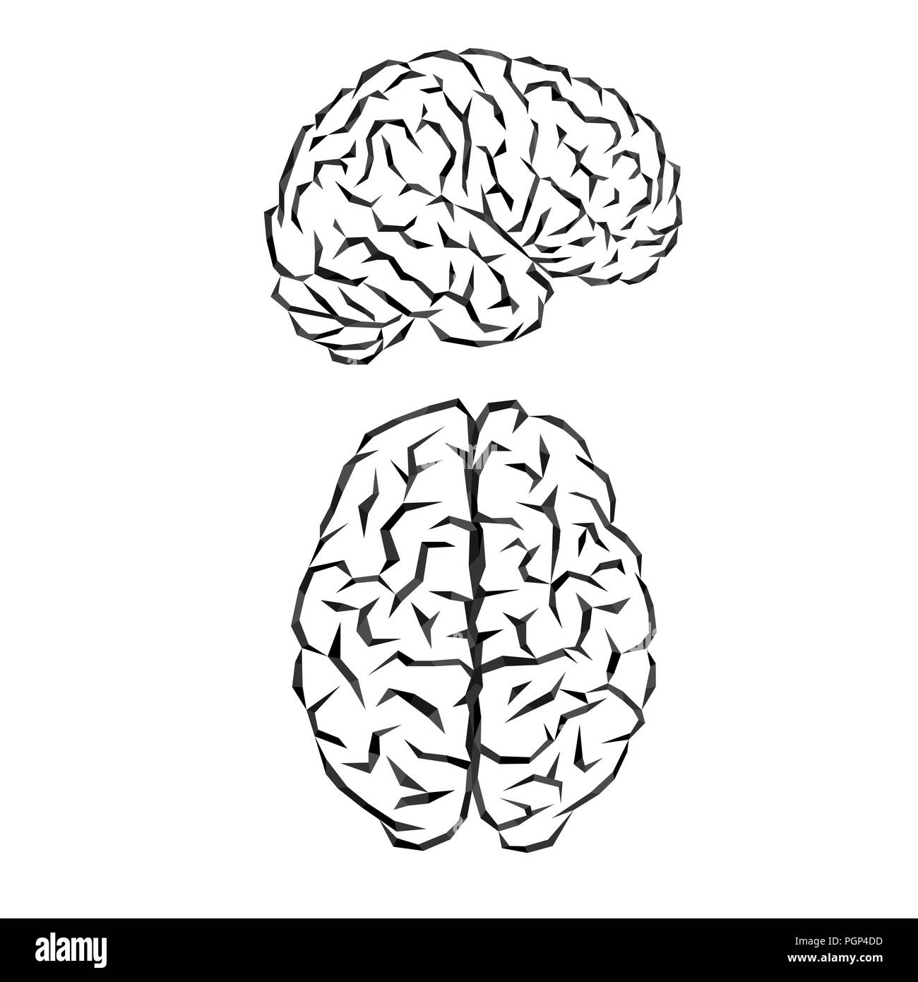 Black outline silhouette of human brain on white background - Stock Image