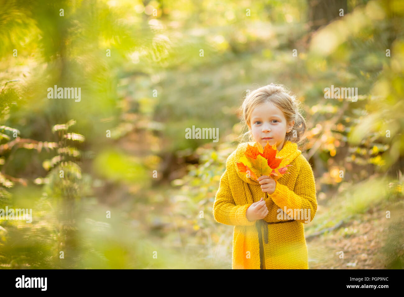 eb9f7f330 Happy autumn. A little girl in ayellow coat is playing with falling ...