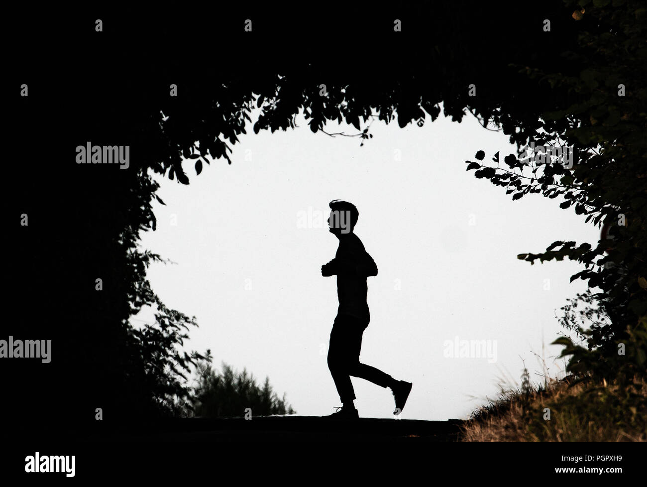 Frankfurt am Main, Germany. 28th Aug, 2018. In the evening, a man crosses a dirt road in the district of Nieder-Erlenbach against the light, which is surrounded by bushes. Credit: Frank Rumpenhorst/dpa/Alamy Live News - Stock Image