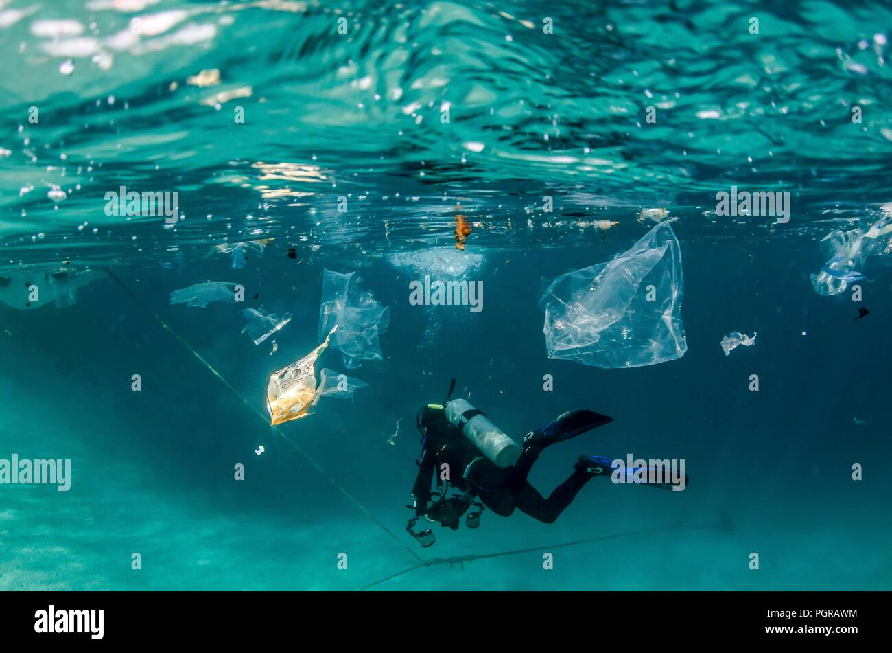 Diver swims through plastic pollution underwater in Egypt - Stock Image