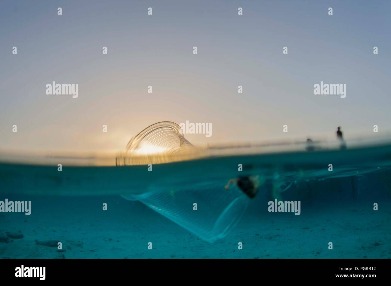 Split shot of a plastic cup floating on the surface of the ocean during sunset Stock Photo