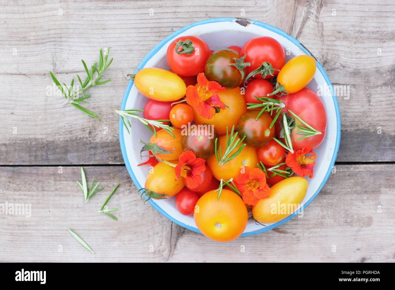 Solanum lycopersicum. Freshly harvested varieties of homegrown heirloom tomatoes with edible flowers, nasturtium and rosemary in enamel dish - Stock Image