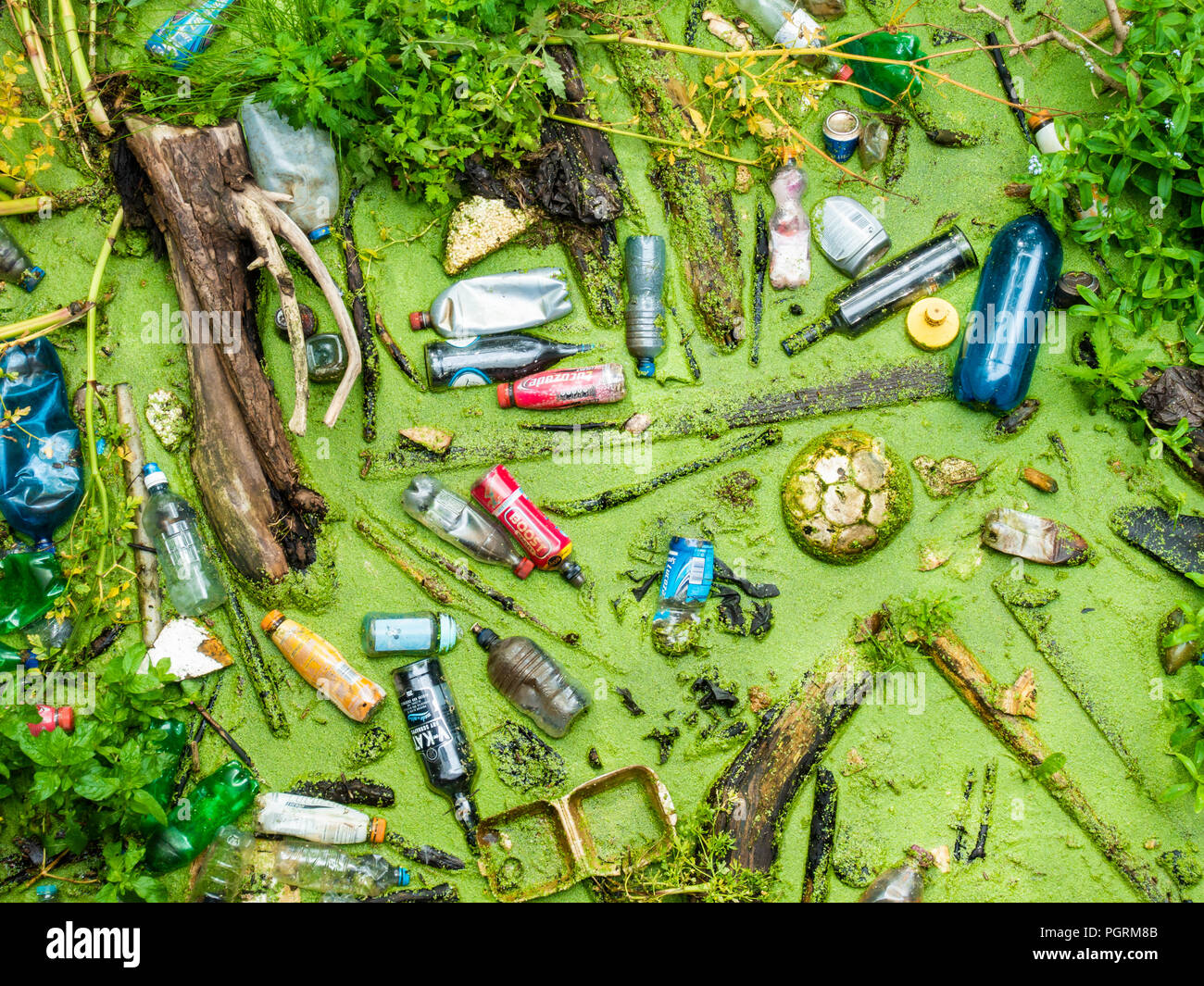 Plastic bottles and rubbish in UK river - Stock Image