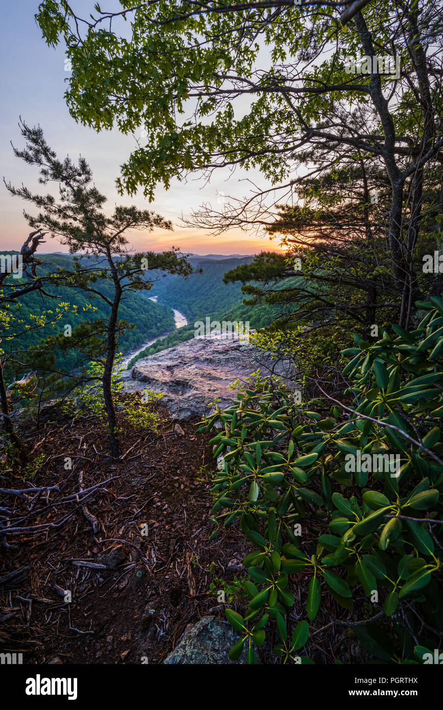Through the cliffline tree canopy along Beauty Mountain in the New River Gorge of West Virginia, one can glimpse the New River winding its course. - Stock Image