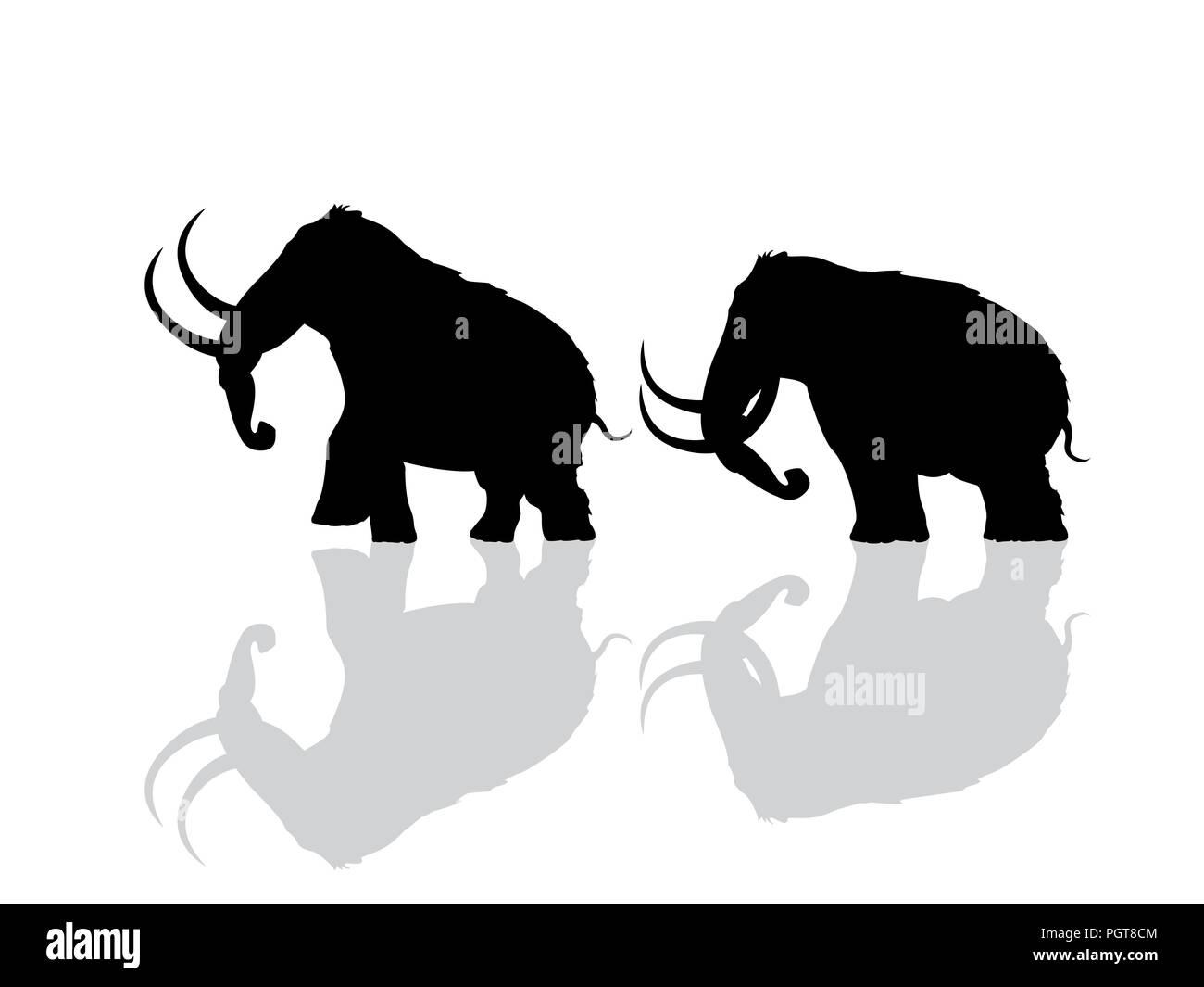 Mammoth Bones Stock Photos & Mammoth Bones Stock Images - Alamy