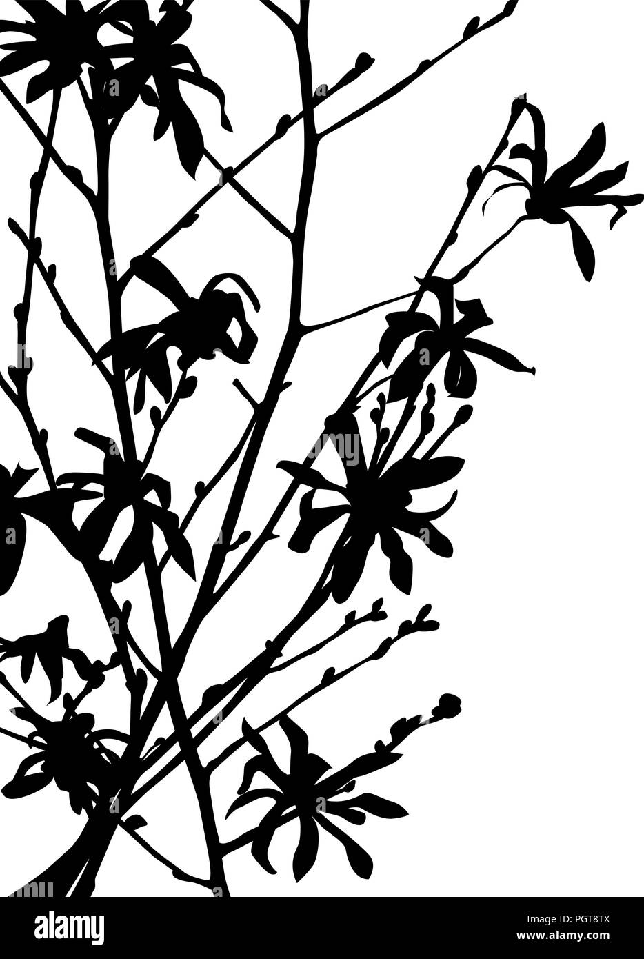 Wild Flower Silhouette In Black And White For Print Stock Vector Art