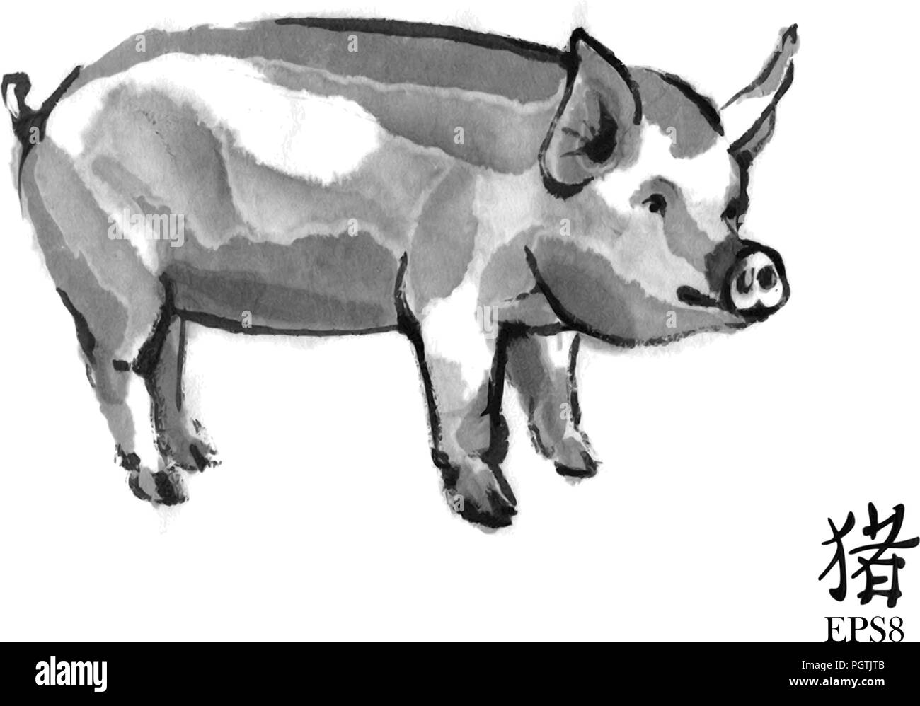 """Pig sumi-e illustration. Domestic swine oriental ink wash painting with Chinese hieroglyph """"pig"""". Symbol of the eastern new year. Stock Vector"""