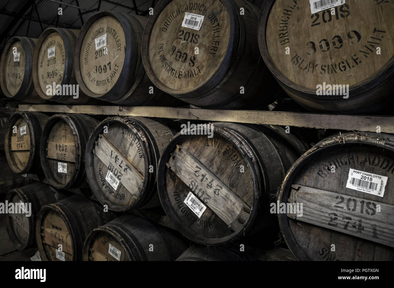 Barrels of Whisky Maturing in a Warehouse, Bruichladdich, Islay - Stock Image