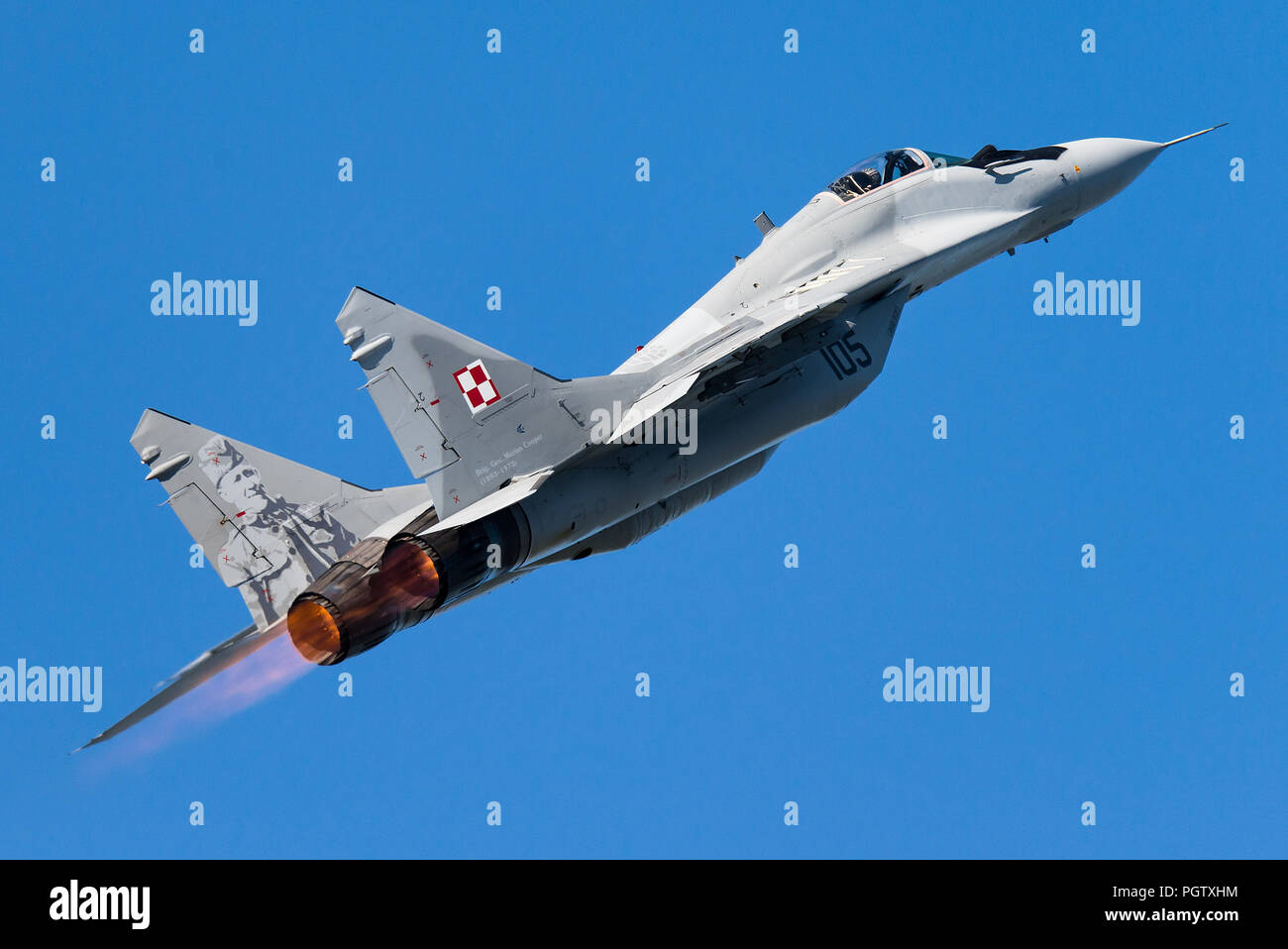 A Mikoyan MiG-29 multirole fighter jet of the Polish Air Force. Stock Photo