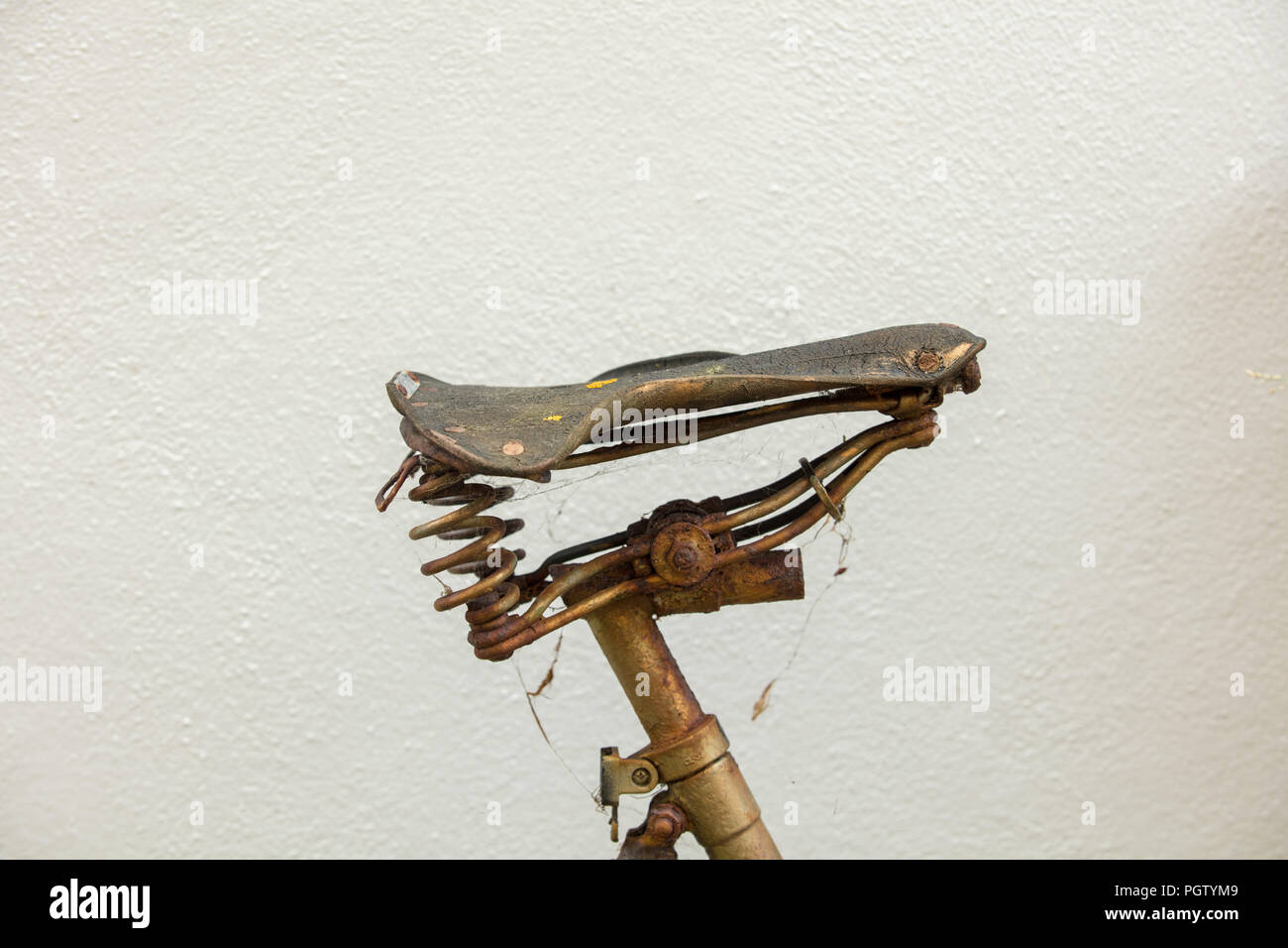 Golden but rusty bicycle saddle creatively used against the white house wall in a tiny small garden in the south coast of England sea town Hastings. - Stock Image