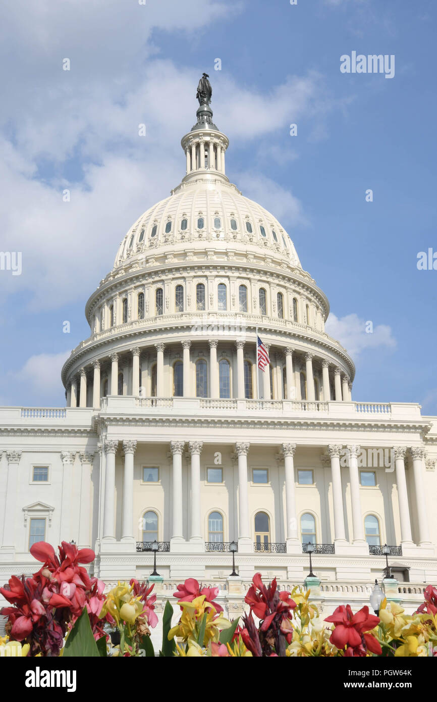 Flowers in front of the U.S. Capitol building on a sunny summer day - Stock Image