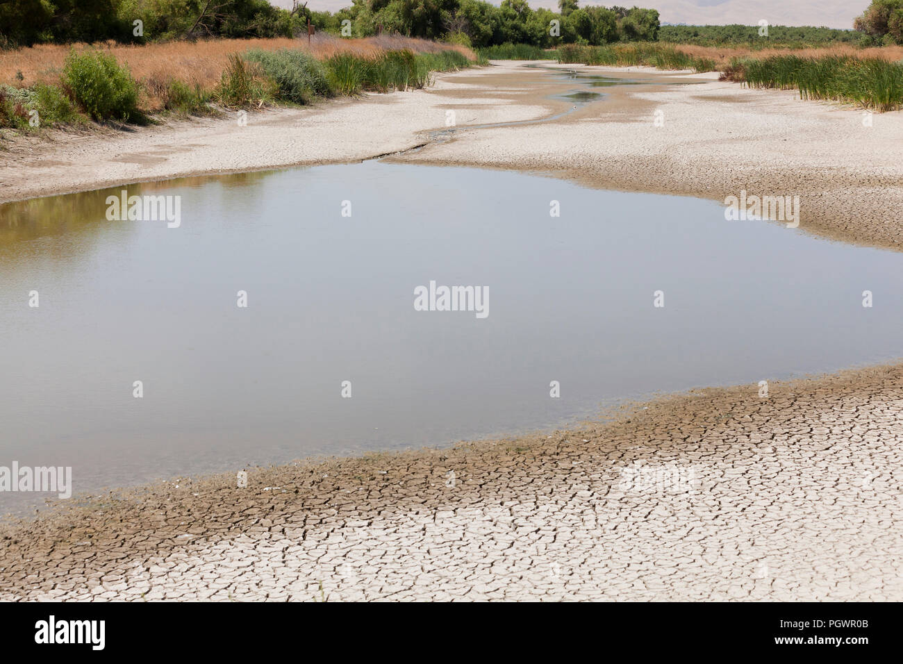 Almost a dry stream bed (aka dry arroyo, dry creek, dry wash, dry gulch) - San Joaquin River National Wildlife Refuge, California USA - Stock Image
