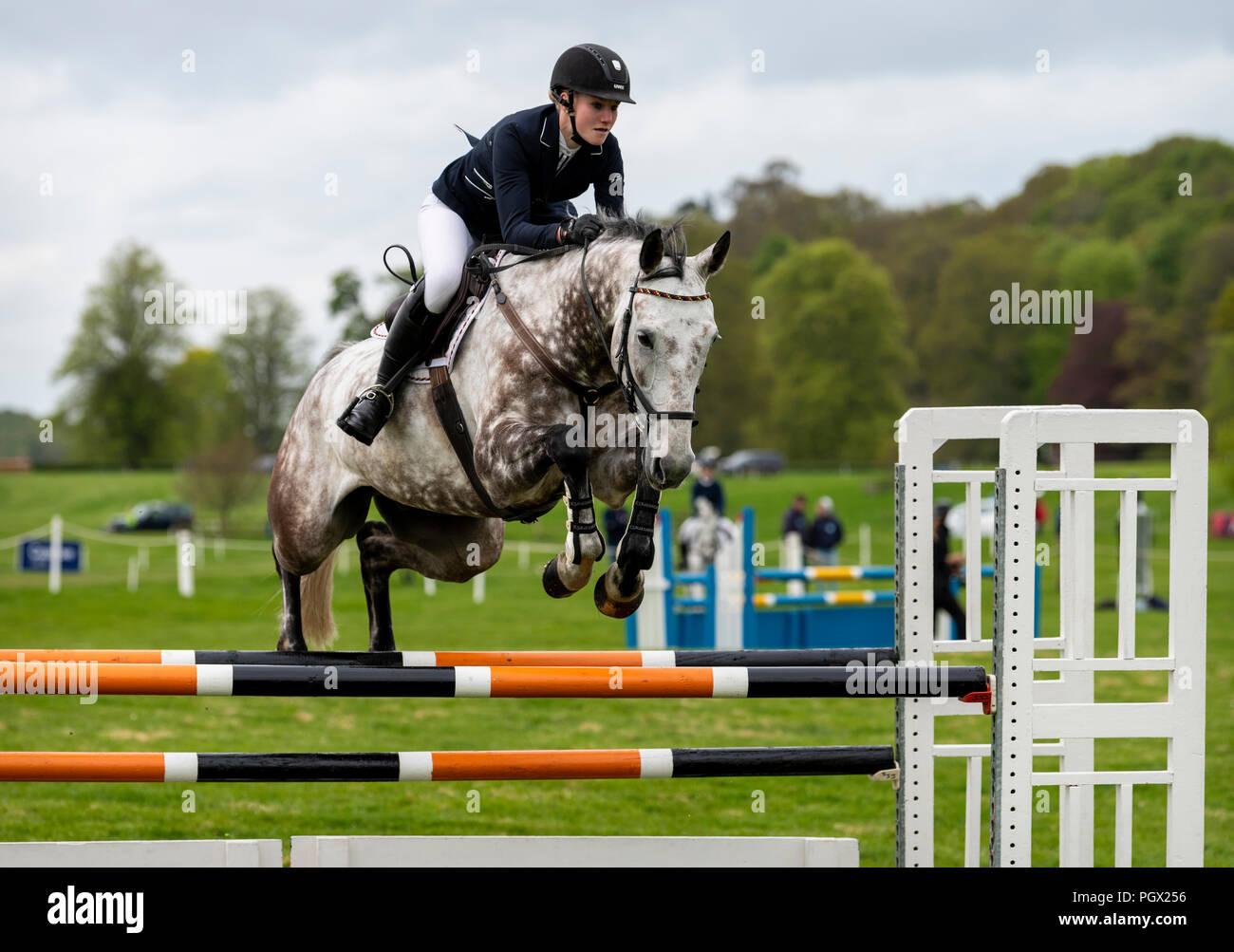 Floors Castle Horse Trials - Stock Image