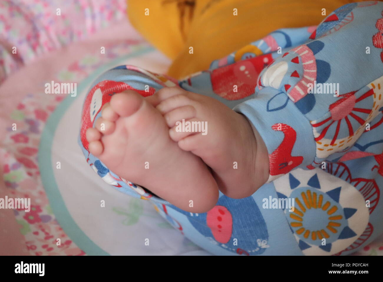 New born baby feet and toes. Cute bare feet all soft and pink - Stock Image
