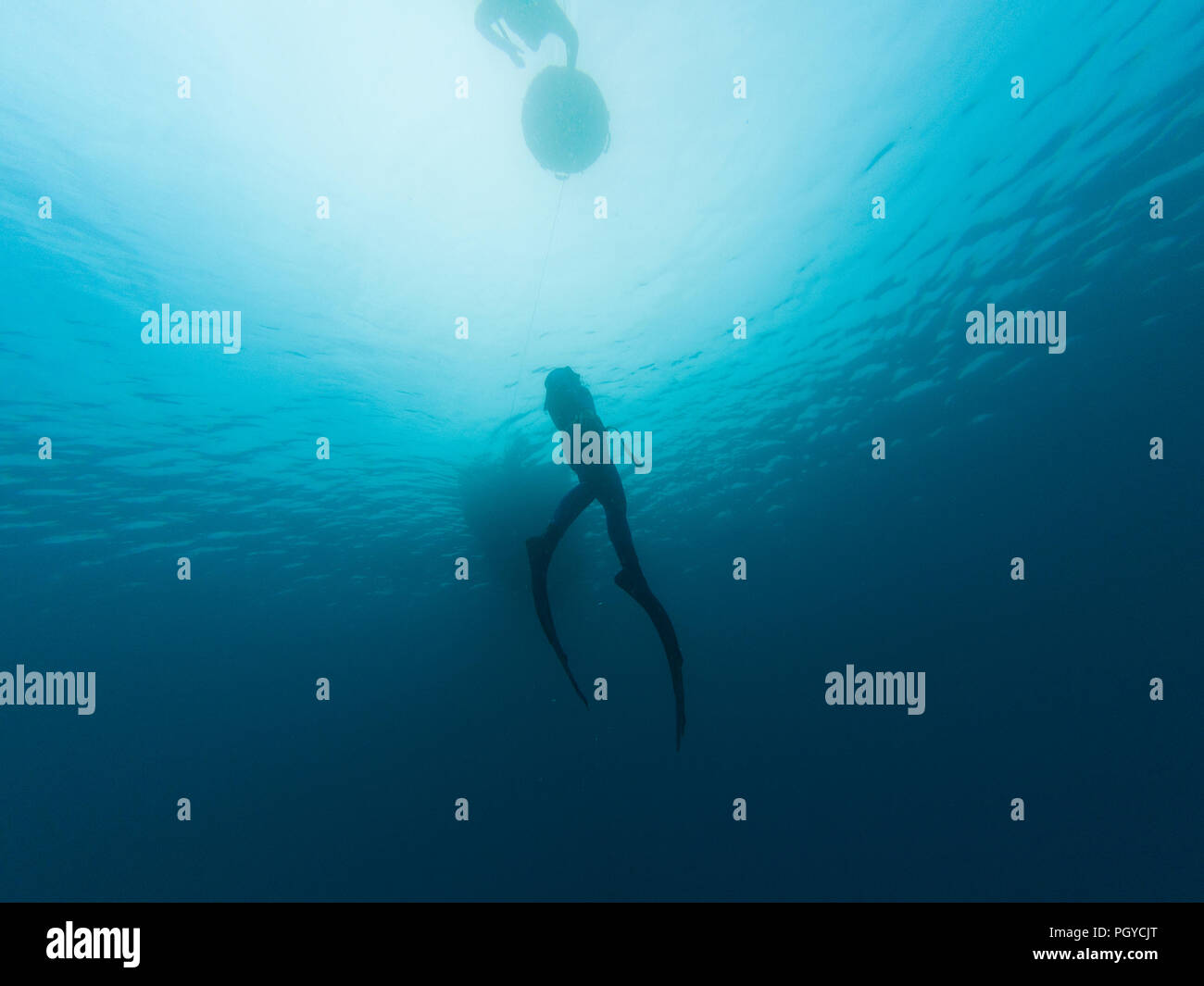Freedivers in the sea - Stock Image