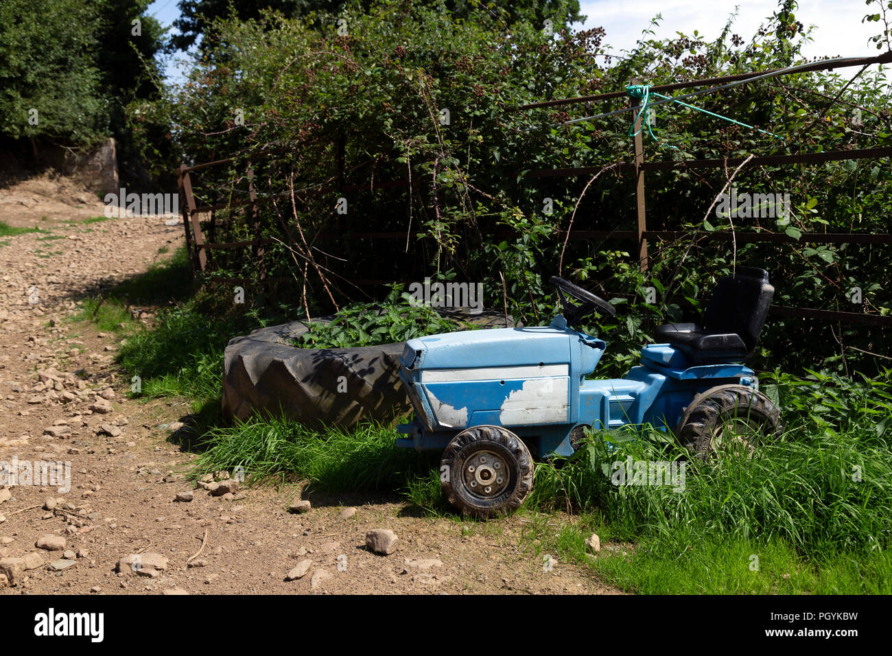 Childs tractor in farmyard,agriculture, cultivation, tilling, tillage, husbandry, land management, farm managementBeauty In Nature, Blue, Bush, Cereal - Stock Image