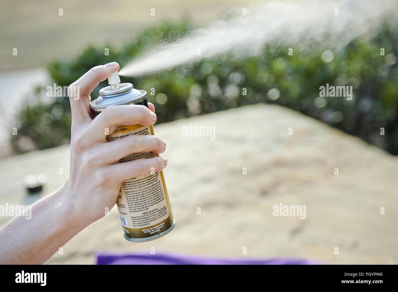Women using EPA-registered insect repellent spray, 2016. Image courtesy Centers for Disease Control (CDC) / National Center for Emerging and Zoonotic Infectious Diseases (NCEZID). () - Stock Image