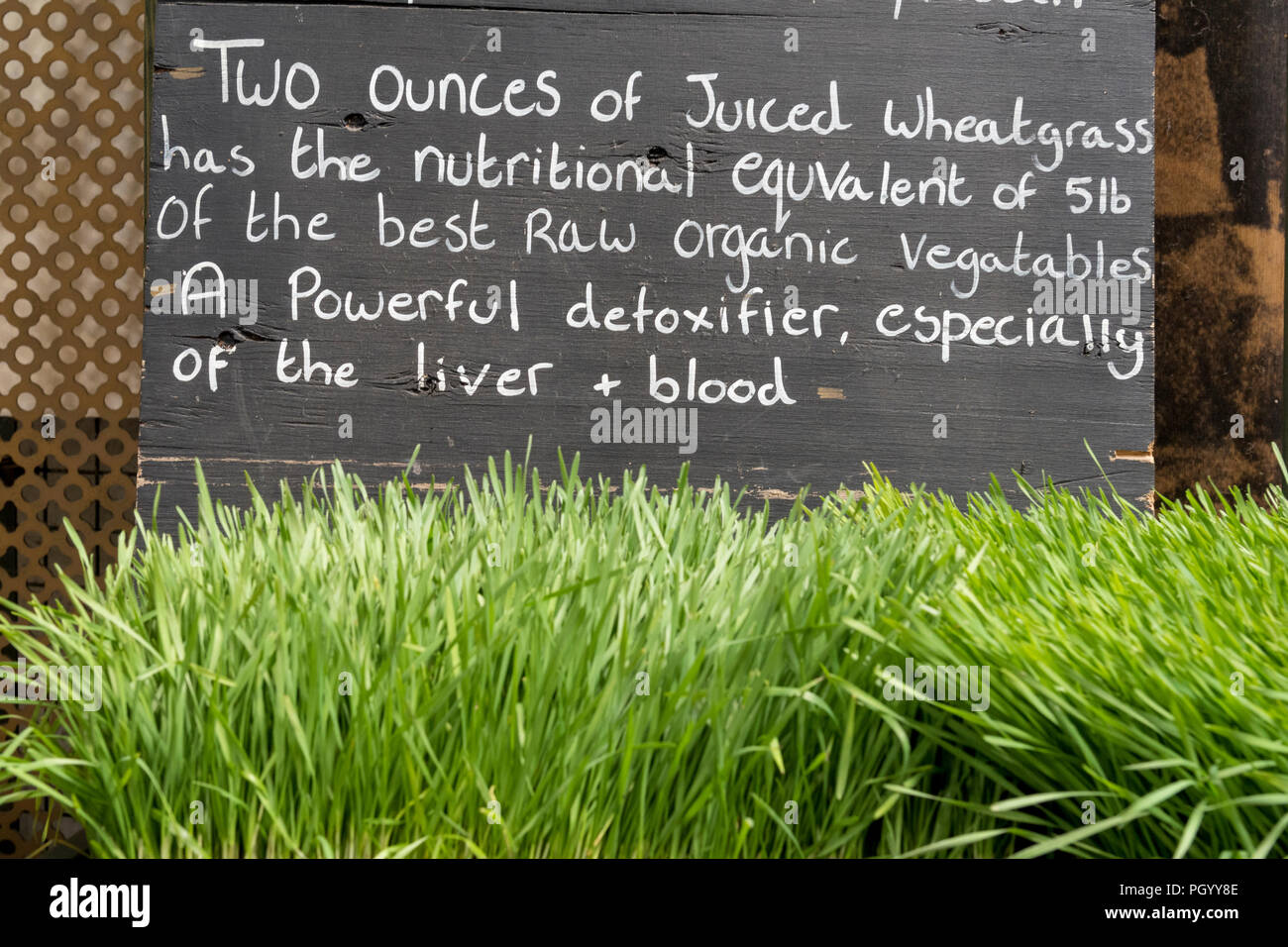 wheatgrass on sale at a market stall with a note on the health benefits. - Stock Image