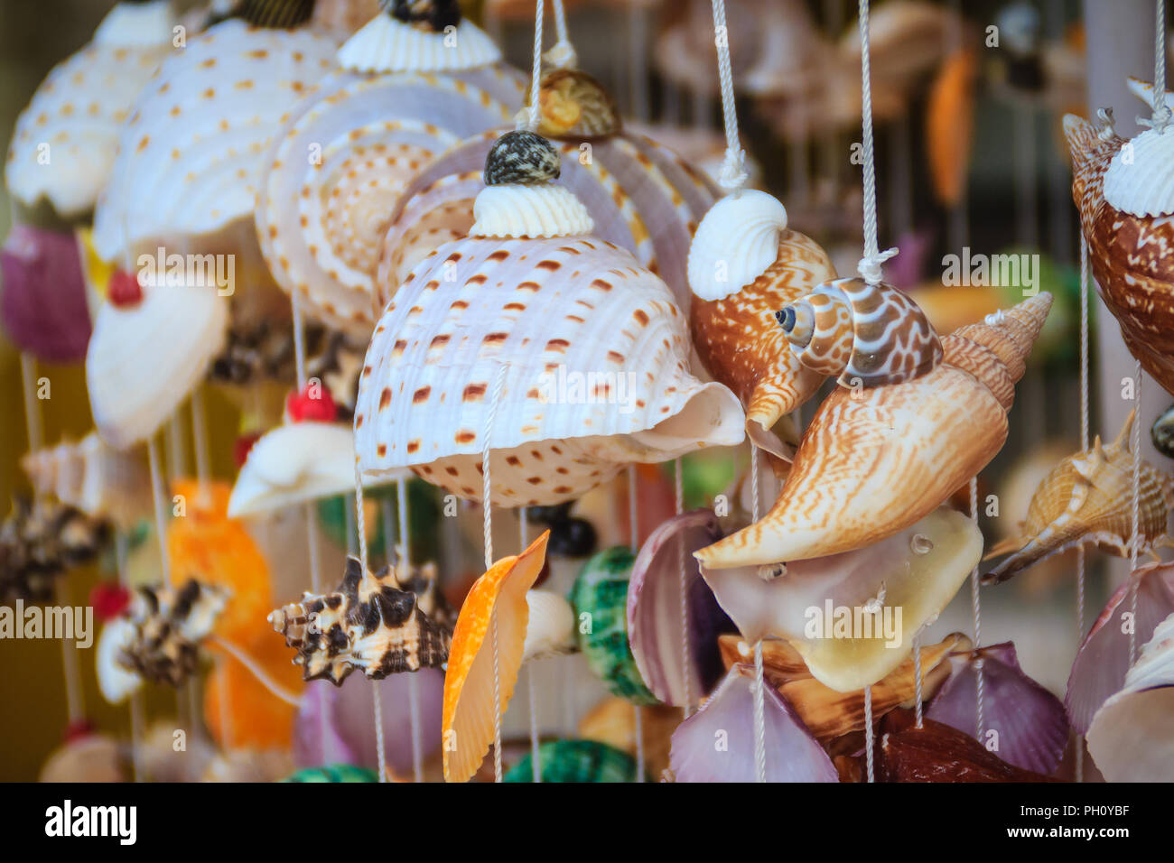Beautiful Seashell Mobile Hanging In The Shop For Sale Handicrafts