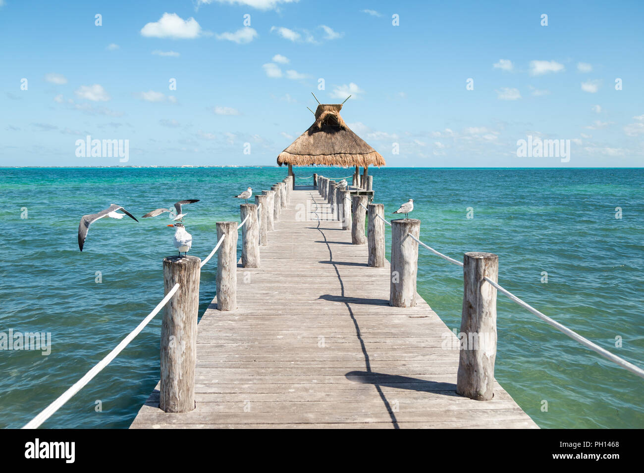 Ocean view from a pier with seagulls perched on either side of it and a grass roof at the end. - Stock Image