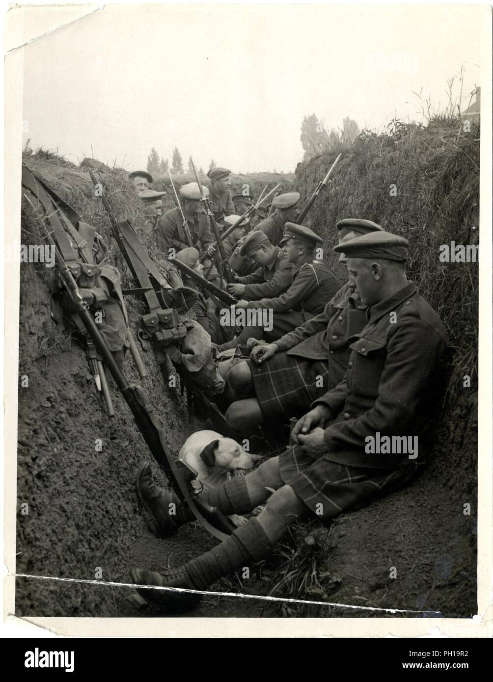 Highland Territorials in a trench [La Gorgue, France]. Photographer H. D. Girdwood. . - Stock Image