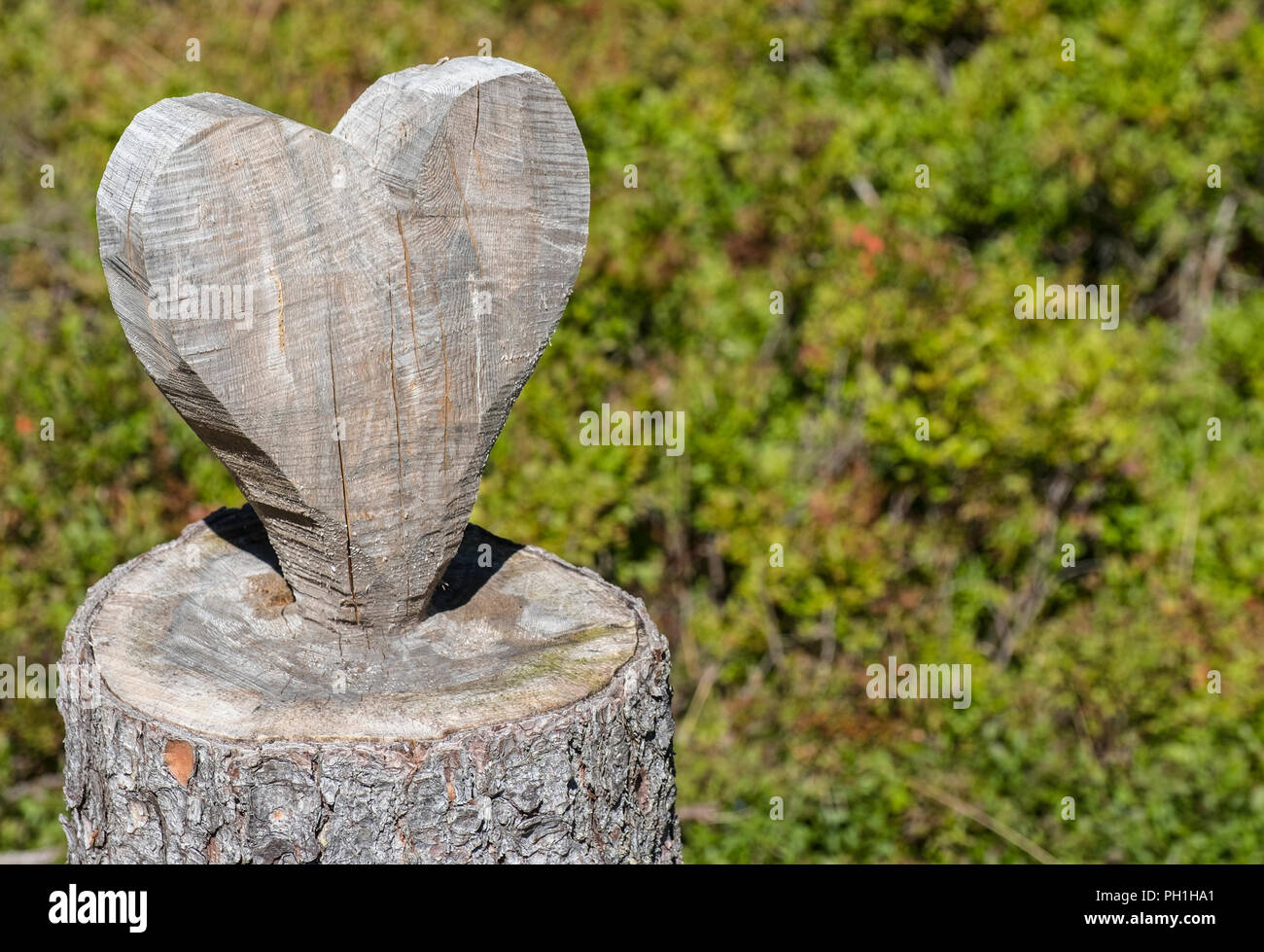 Wooden heart, Austria, Europe - Stock Image