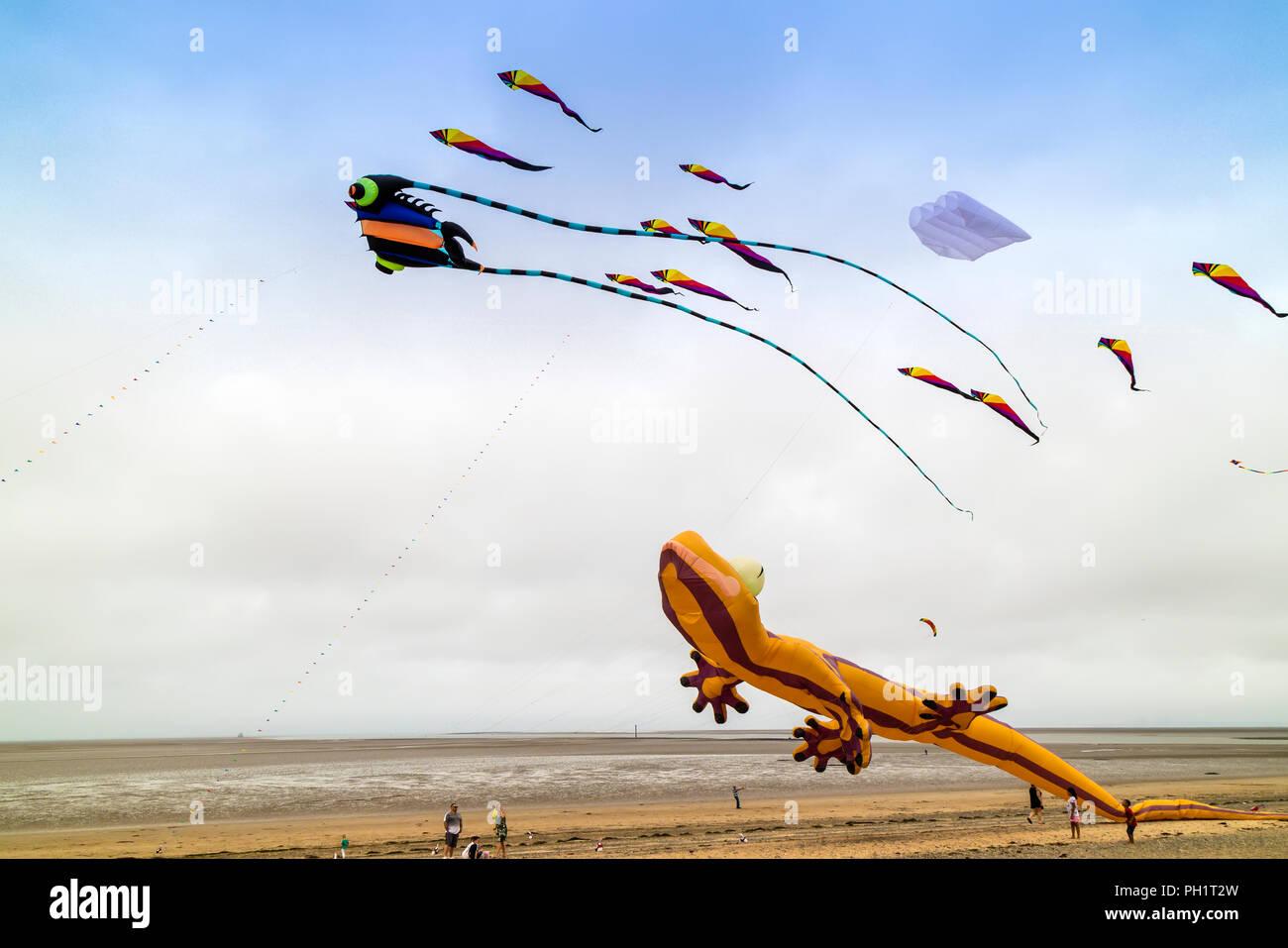 Flying kites on a sandy beach in summertime. - Stock Image