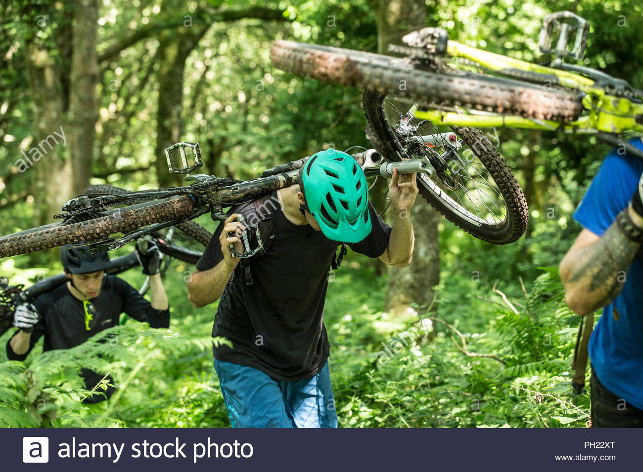 Friends carrying mountain bikes uphill in a forest - Stock Image